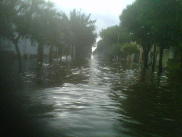 tormenta24