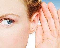 sordo