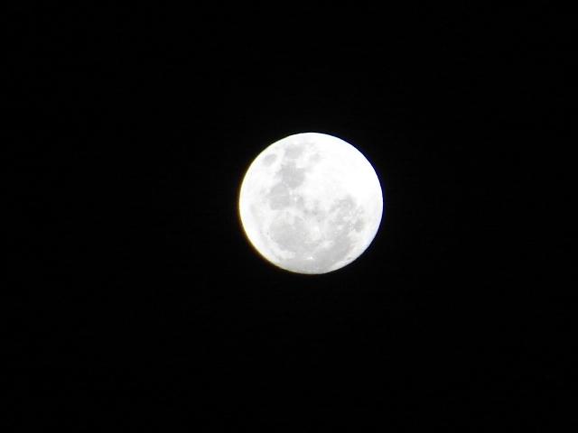 luna14