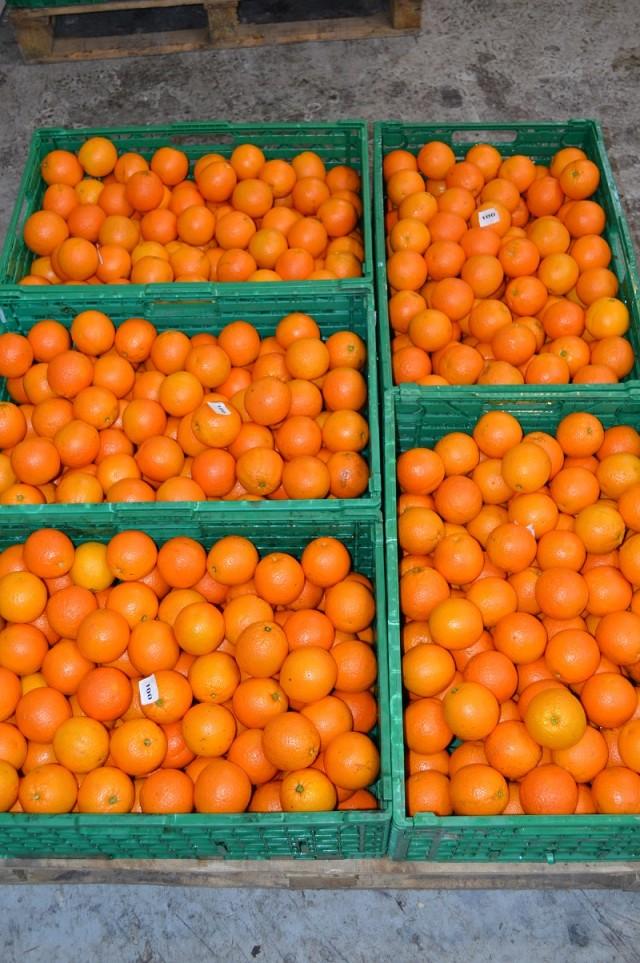naranjas en baja