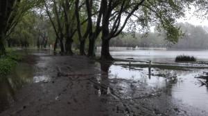 lluvia29-4