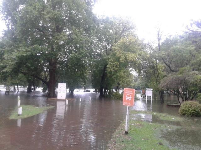 lluvia25-parque (1)
