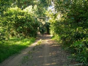 caminos22-4