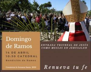 Afiche Domingo de Ramos Catedral