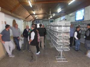 canaricultores10-2