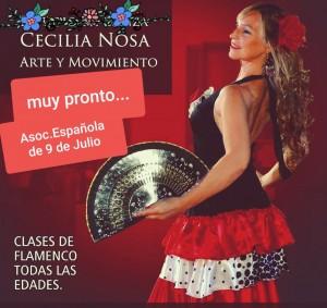 cecilianosa-flamenco31
