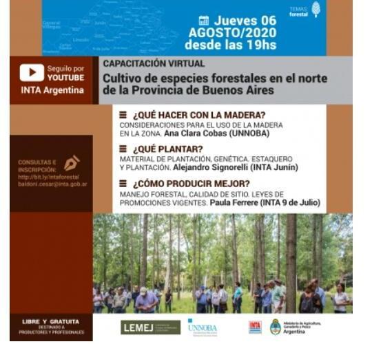 Capacitación hoy 19 hs: Cultivo de especies forestales